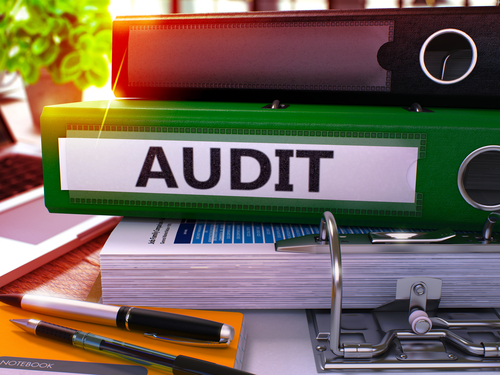 what to do when your business gets audited